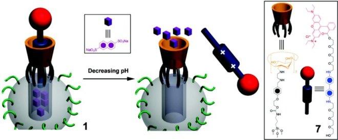 Scheme of Nanopiston. Reproduced from Scheme 1 of J. Am. Chem. Soc., 2010, 132 (37), pp 13016–13025